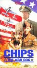 Video : Chips the War Dog