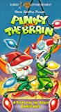 Pinky & the Brain: A Pinky & the Brain Christmas