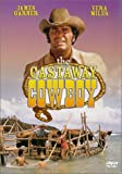 The Castaway Cowboy - movie DVD cover picture