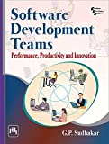SOFTWARE DEVELOPMENT TEAMS : PERFORMANCE, PRODUCTIVITY AND INNOVATION