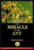 The Miracle in the Ant by Harun Yahya