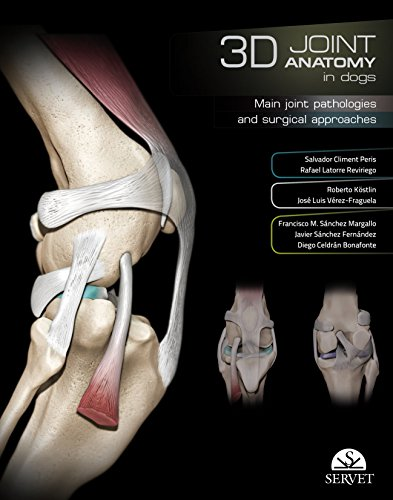 3D JOINT ANATOMY IN DOGS: MAIN JOINT PATHOLOGIES & SURGICAL APPROACHES (HB)