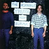 Copertina di The Horrible Truth About Burma