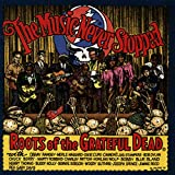 Cover de The Music Never Stopped: Roots of the Grateful Dead