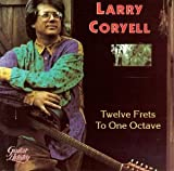 Album cover for Twelve Frets To One Octave