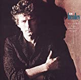 Don Henley: Building the Perfect Beast