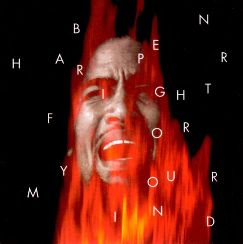 Ben Harper - Fight for Your Mind - Zortam Music