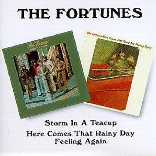 Storm in a Teacup/Here Comes That Rainy Day Feeling Again