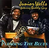 Album cover for Pleading the Blues