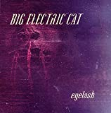 Eyelash cover art