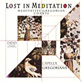 Lost in Meditation Vol 1