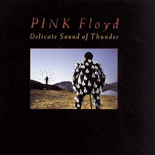 Pink Floyd - Delicate Sound Of Thunder (Disc 2) [Live] - Zortam Music