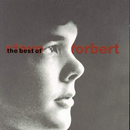 Steve Forbert - The Best of Steve Forbert: What Kinda Guy? - Zortam Music