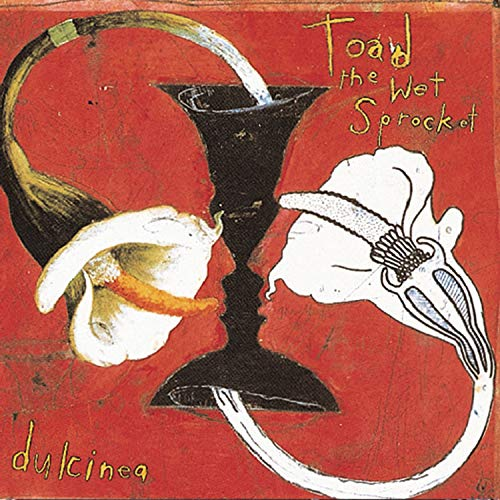 Toad the Wet Sprocket - Dulcinea - Zortam Music