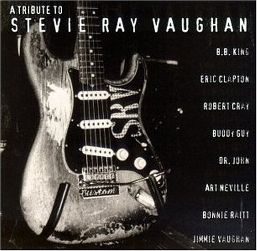 A Tribute To Stevie Ray Vaughan compilation