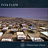 album art to A Momentary Lapse of Reason
