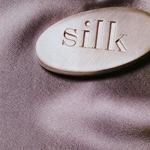 Cover of Silk