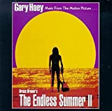 Capa de The Endless Summer II