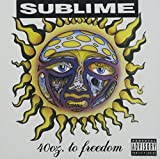 Sublime - We're Only Gonna Die For Our Arrogance Lyrics