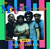 Skivomslag för The Meters Anthology - Funkify Your Life (disc 2)
