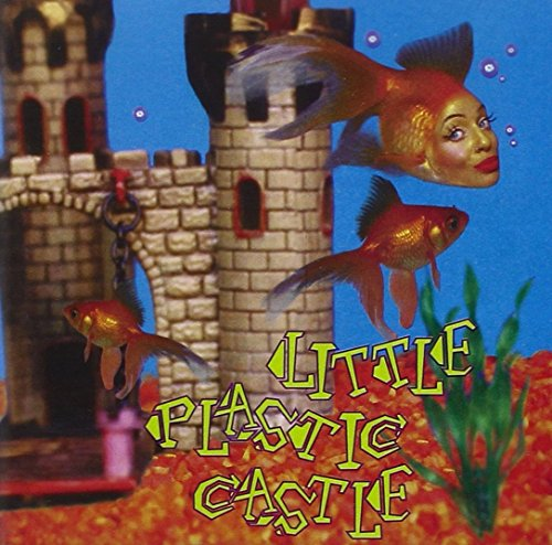Ani Difranco - Little Plastic Castle - Zortam Music