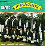 Album cover for Con Sangre De Indio