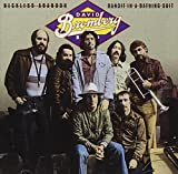 David Bromberg - Reckless Abandon/Bandit in a Bathing Suit