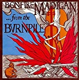 Album cover for ...From The Burnpile