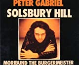 Solsbury Hill [Germany]