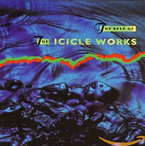ICICLE WORKS - The Best Of The Icicle Works - Zortam Music