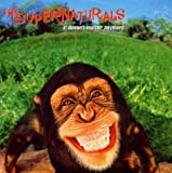 album It Doesn't Matter Anymore by The Supernaturals