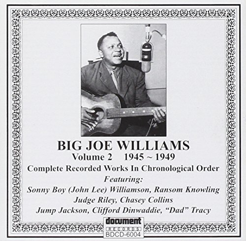 CD-Cover: Big Joe Williams - These are my blues