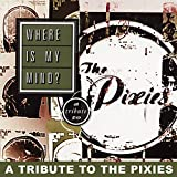 Cover von Where Is My Mind?  A Tribute