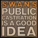album art to Public Castration Is a Good Idea