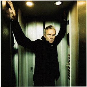 Sting - Desert Rose Lyrics - Lyrics2You