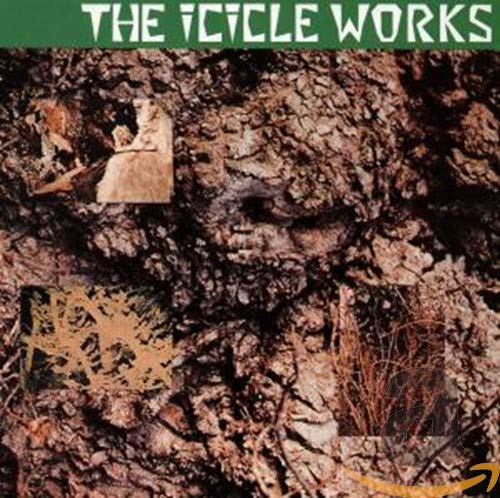 ICICLE WORKS - ICICLE WORKS - Zortam Music
