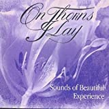 Copertina di album per Sounds of Beautiful Experience