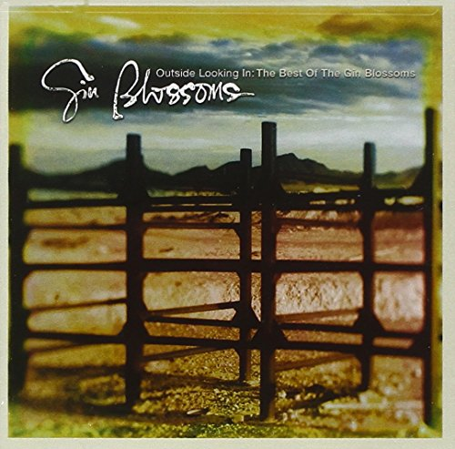 Gin Blossoms - Outside Looking In: The Best Of Gin Blossoms - Zortam Music