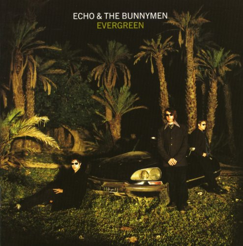 Echo & the Bunnymen - Evergreen - Zortam Music