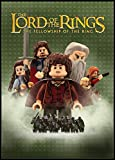 The Lord of the Rings - The Fellowship of the Ring (Widescreen Edition) - movie DVD cover picture