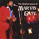 Soulful Sound of Marvin Gaye [Sony Special Products]