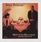 Capa de Waltz of the Wallflowers (A Dysfunctional Duet)