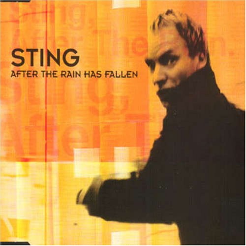 After the Rain Has Fallen, Pt. 2 [Import CD Single]