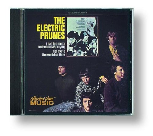 The Electric Prunes: I Had Too Much to Dream (Last Night)