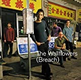 Copertina di album per Breach (bonus disc)