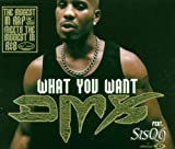 What You Want [Import CD]