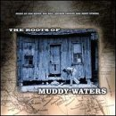Skivomslag för The Roots Of Muddy Waters