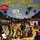 Album cover for Meets the Roots Radics