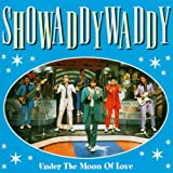 Cover of Under the Moon of Love