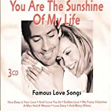 Skivomslag för You Are the Sunshine of My Life: Famous Love Songs